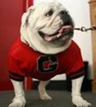 Remembering Uga VI Obituary (AP News)